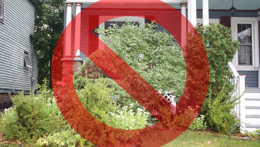 5 Big Olathe Landscaping Mistakes To Avoid This Summer Huston