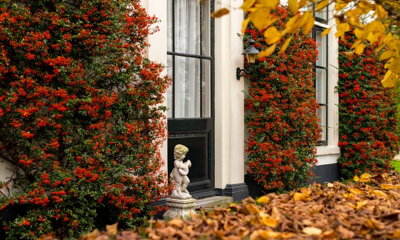 10 Great Fall Decorative Ideas to Enhance Your Landscaping and Curb Appeal