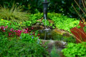 Benefits of Landscaping Water Features
