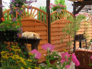 Maximize Privacy Through Landscaping